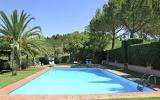 Holiday Home Pisa Toscana: Holiday Cottage - 1St Floor Stringaio In Fauglia ...