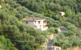 Holiday Home Liguria: Pizzamiglio (It-16030-07)