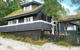 Holiday Home Norway Fernseher: Åseral 29655